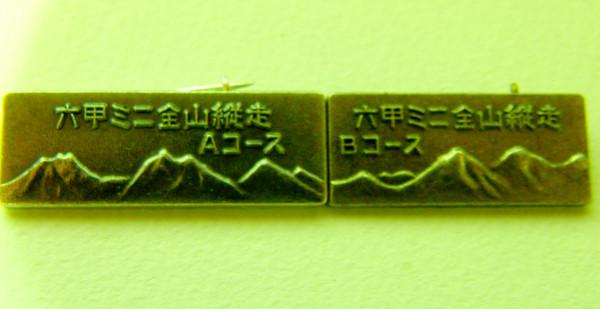 P4170042