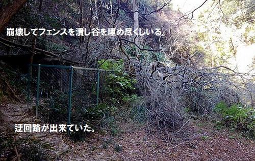 Kimg0128_2_2
