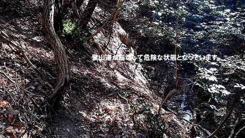Kimg0131_2_2