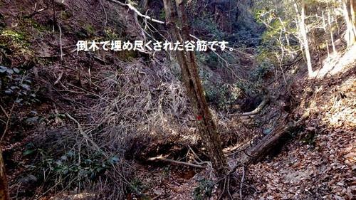 Kimg0132_2_2